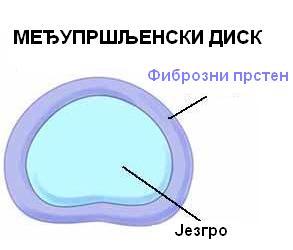 Presek_kroz_I.V._disk
